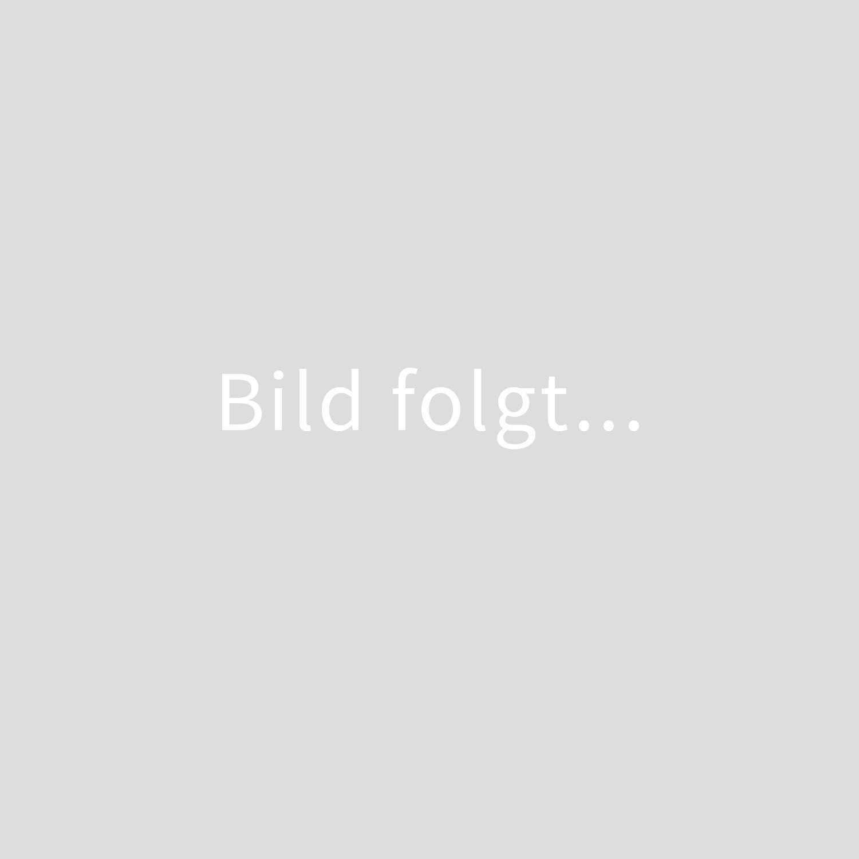 Akkordeon kaufen Adrian Leuenberger
